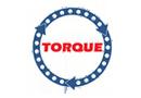 Технический онлайн вебинар по Torque.
